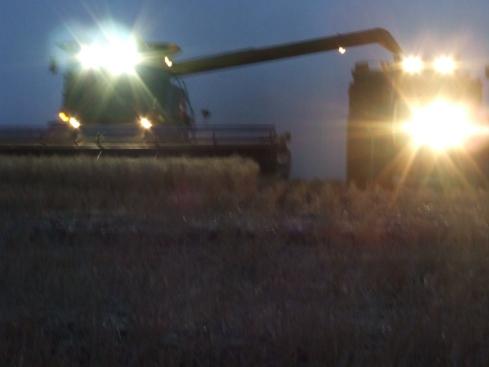harvest-08086